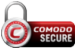 Enterprise SSL Certificate Secure Site